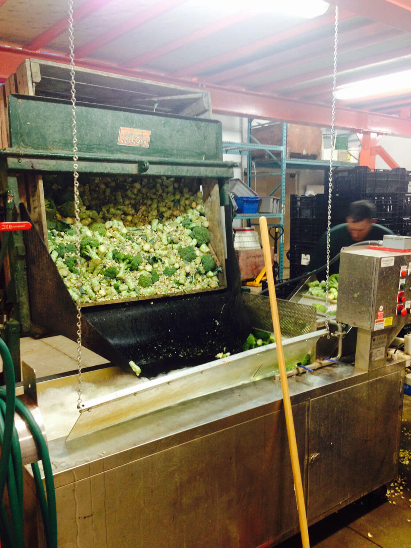 Processing Food