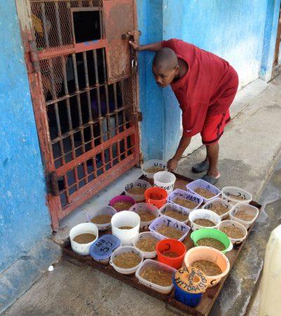 Prison Feeding